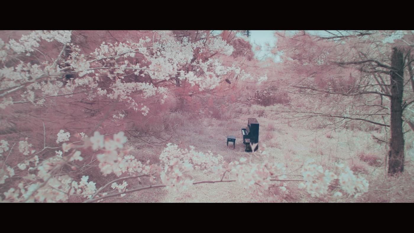 RADWIMPS「鋼の羽根」MV