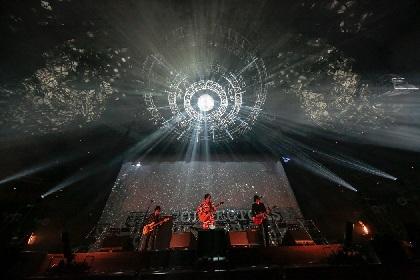 ザ・コレクターズ 初の武道館公演が映像化、ライブ音源付きで6月にリリース