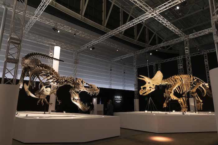 『Sony presents DinoScience 恐竜科学博 〜ララミディア大陸の恐竜物語〜 2021@YOKOHAMA』