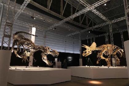 ソニーの恐竜展『DinoScience 恐竜科学博』はこんなにスゴイ! 大興奮の内覧会レポート
