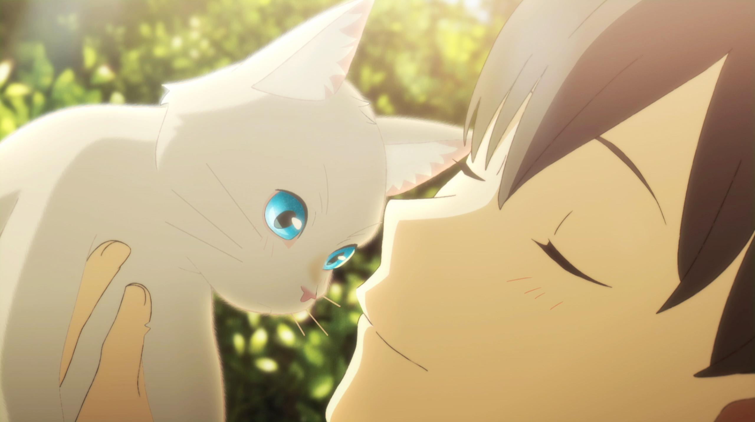 (c) 2020 「泣きたい私は猫をかぶる」製作委員会