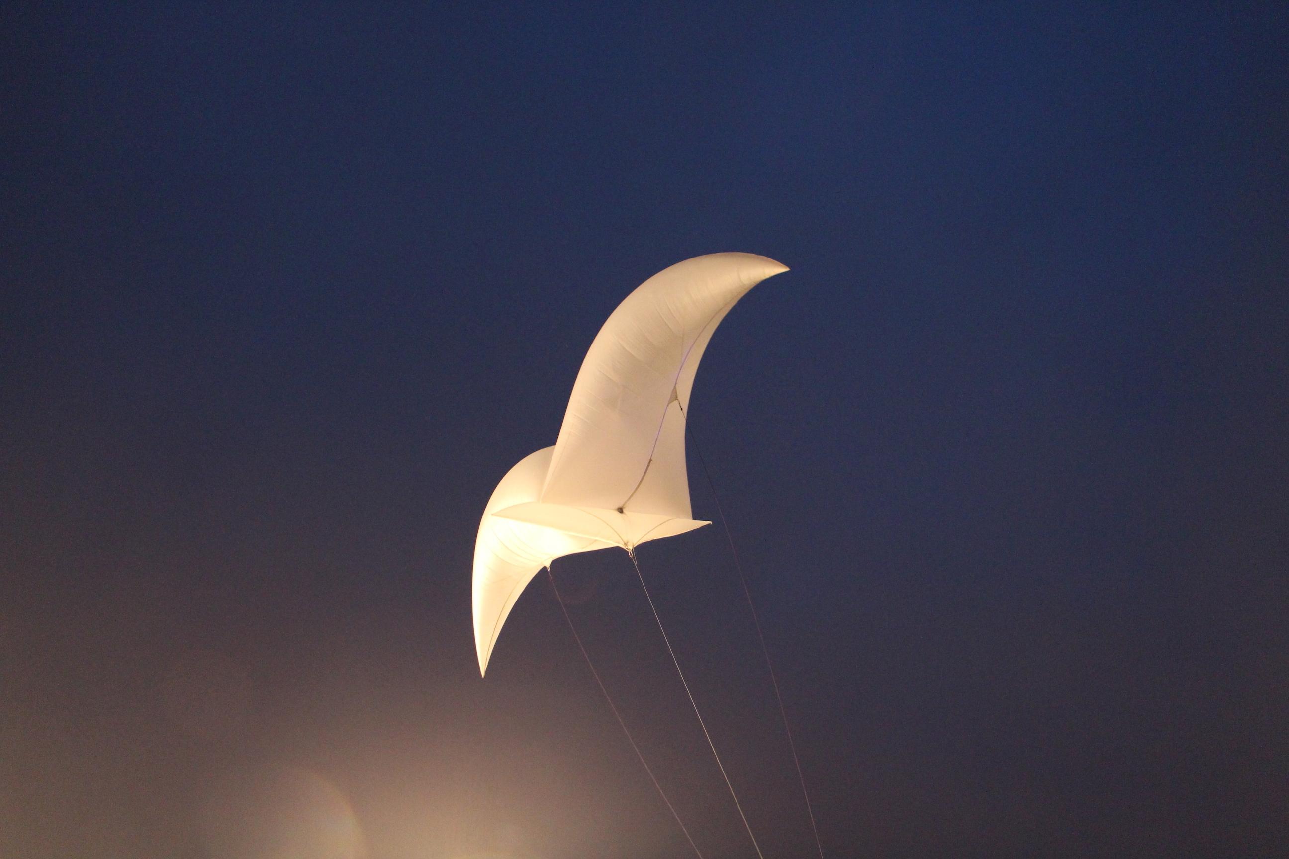空を優雅に飛ぶ