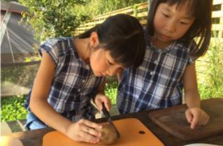 ジビエ味噌汁作り体験