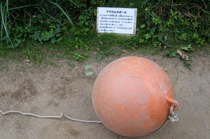 クマさんのボール