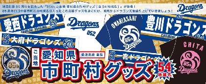 ドラゴンズ愛×地元愛! 愛知県市町村名入り「ご当地応援グッズ」が登場