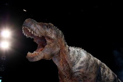 ヒカリエにティラノサウルス(全長8.0m)やトリケラトプス(全長6.5m)が登場 体験型ライブエンターテインメント『DINO SAFARI』今年も開催