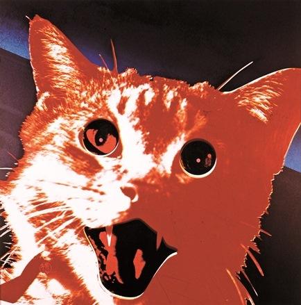 《風景No.13 赤猫》1969年 個人蔵