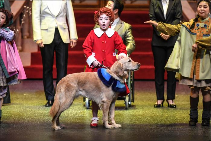 ミュージカル『アニー』韓国版のアニー(チョン・イェジン)とサンディ(タルボンイ) ©世宗文化会館