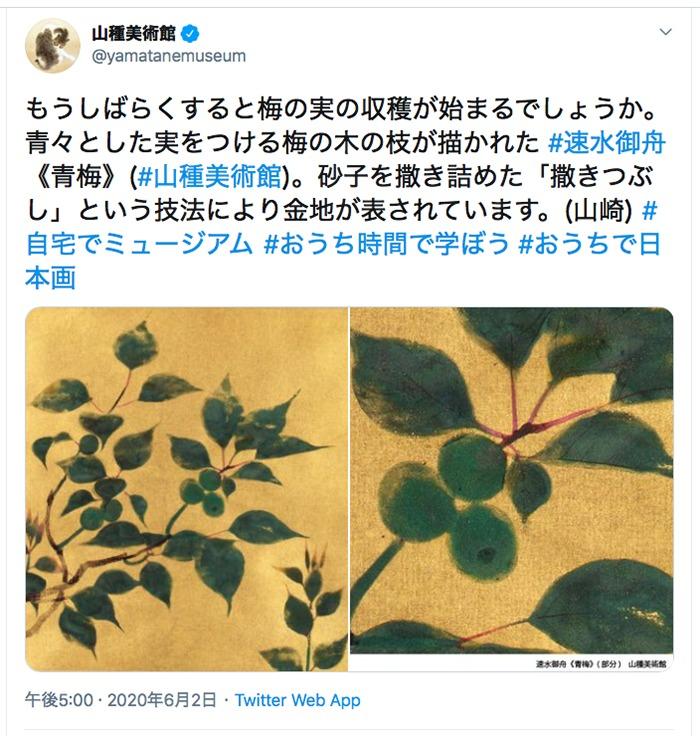 山種美術館ツイッターより引用 (2020年6月2日17時のツイートより)