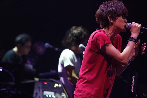 「kokua Tour 2016 Progress」福岡・福岡国際会議場メインホール公演の様子。(Photo by TSUNEO KOGA)