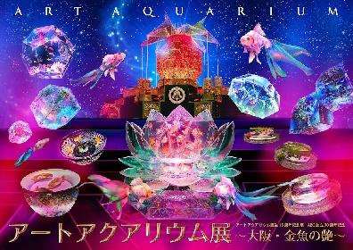 『アートアクアリウム展 ~大阪・金魚の艶~』2021年7月より大阪・堂島リバーフォーラムにて開催