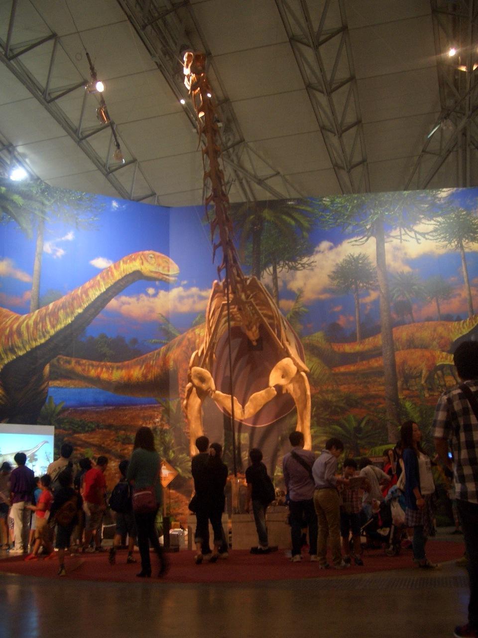 トゥリアサウルス 復元骨格 (半身 )