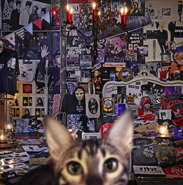 BUCK-TICK 30th Anniversary Best Album『CATALOGUE 1987-2016』
