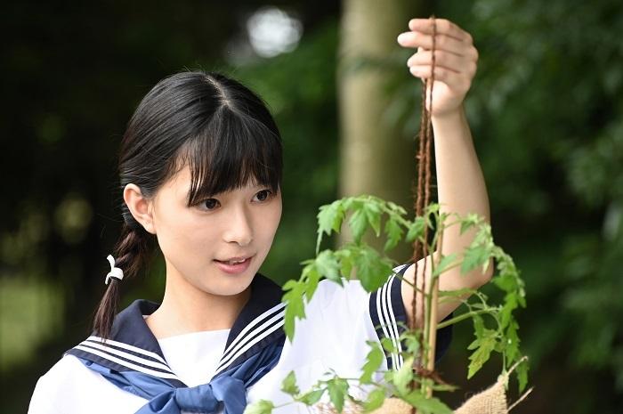 ドラマ主演を務める芳根京子