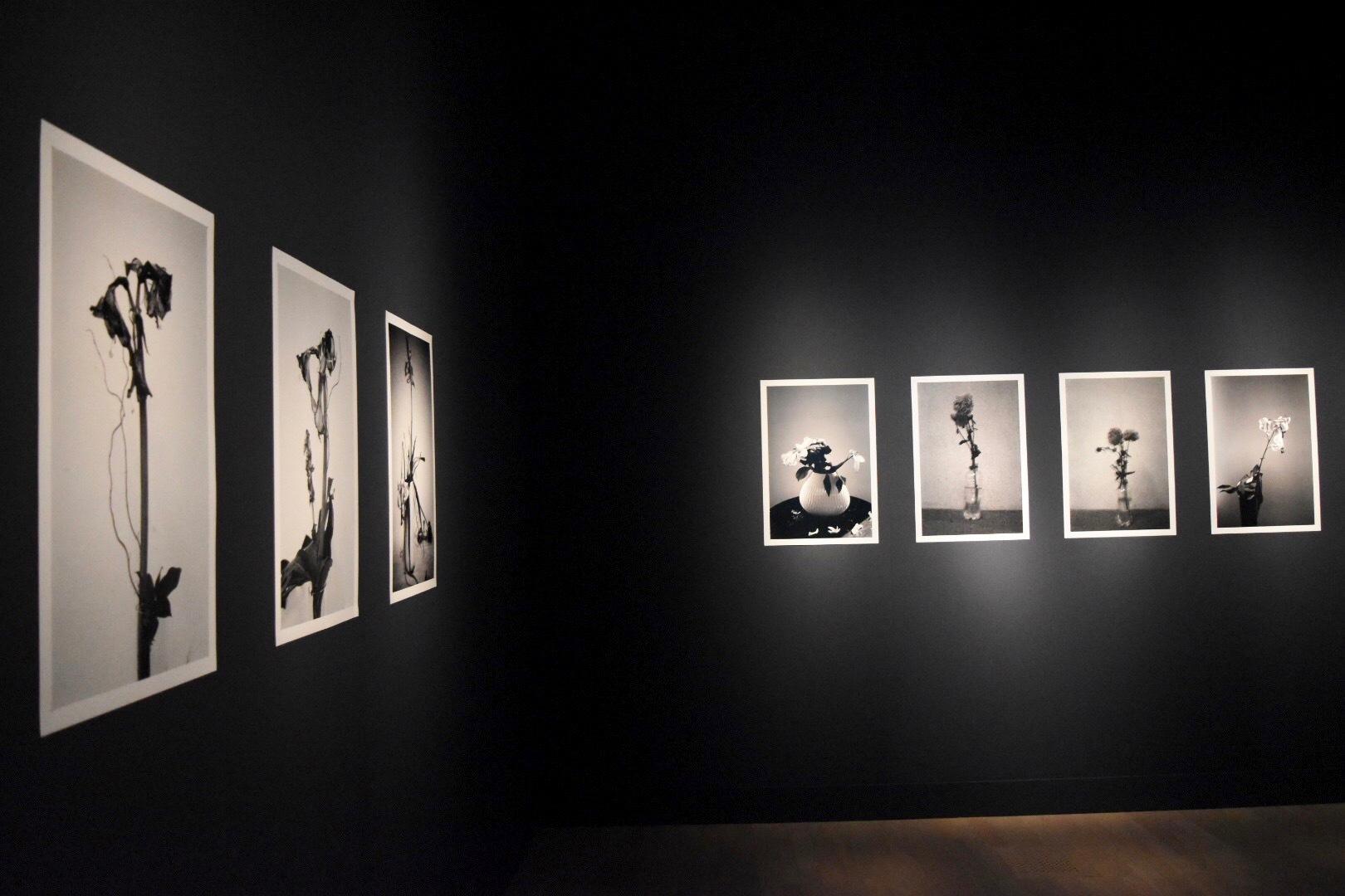 『イケムラレイコ 土と星 Our Planet』展 2019年 国立新美術館展示風景