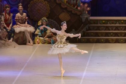 森下洋子の舞踊歴70周年を記念して、フェスティバルホールで新「白鳥の湖」を上演