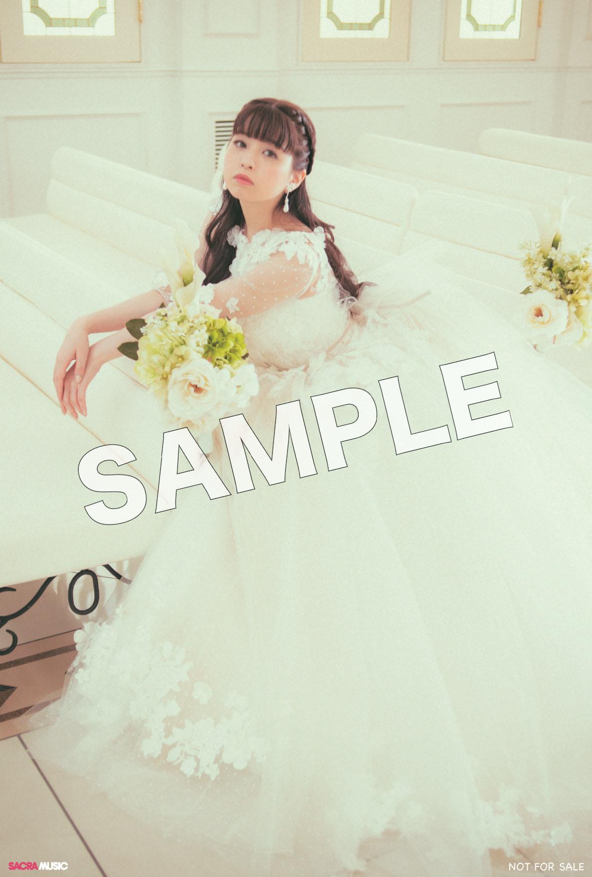 sample_とらのあな