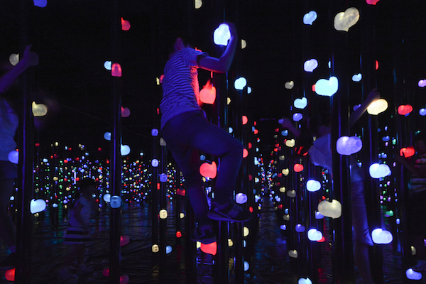 """Light Forest Three-dimensional Bouldering"""