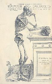 『人体 ―神秘への挑戦―』展が科博で開催、Nスペ『人体』との連携企画