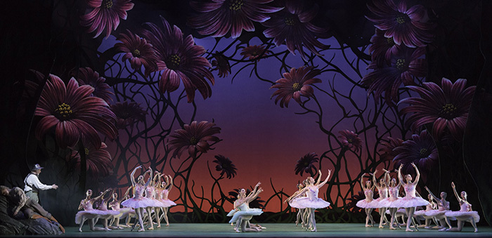 Don Quixote. Artists of The Royal Ballet  (c) ROH, Johan Persson, 2013.