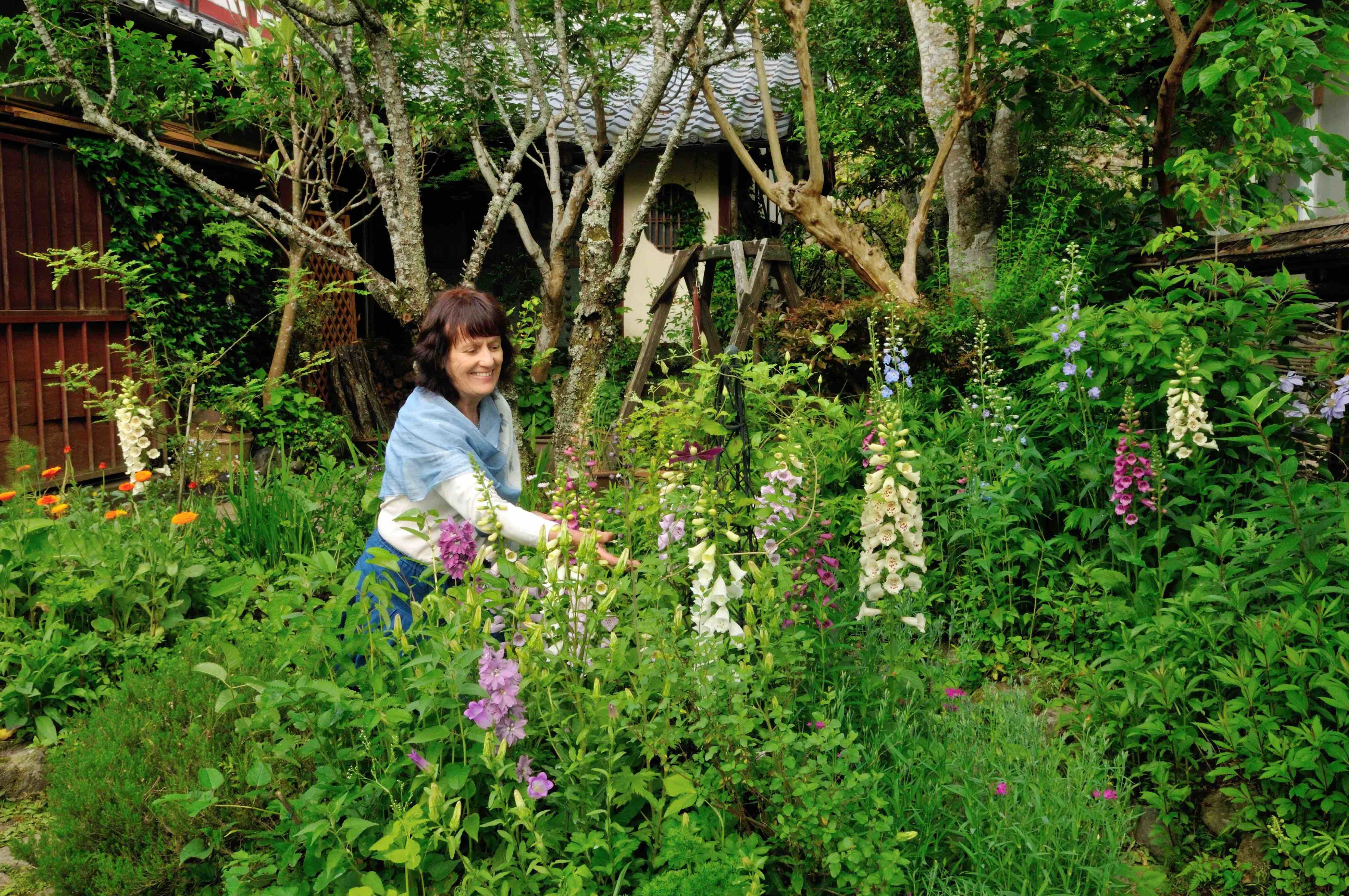 ジキタリスの花咲く初夏の庭 写真撮影=梶山 正