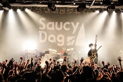 Saucy Dog『ワンダフルツアー2018』ワンマン編・初日、挑戦と自覚が記したバンドの現在地は