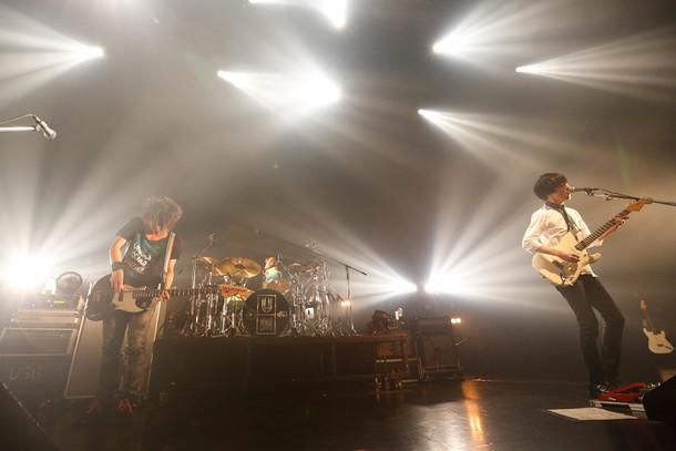 「UNISON SQUARE GARDEN TOUR 2015-2016『プログラムcontinued』」新木場STUDIO COAST公演の様子。(撮影:森久)