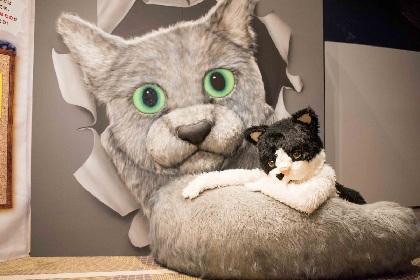 """猫のミュージシャン、むぎ(猫) """"会いたい気持ち""""を表現した「君に会いに」MV公開"""