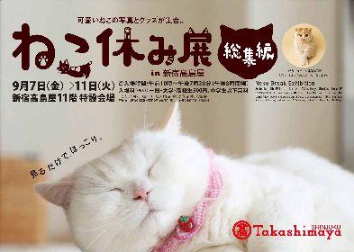 『ねこ休み展』総集編が新宿高島屋で開催 トータルSNSフォロワー数300万人超え、猫クリエイターたちが集結!