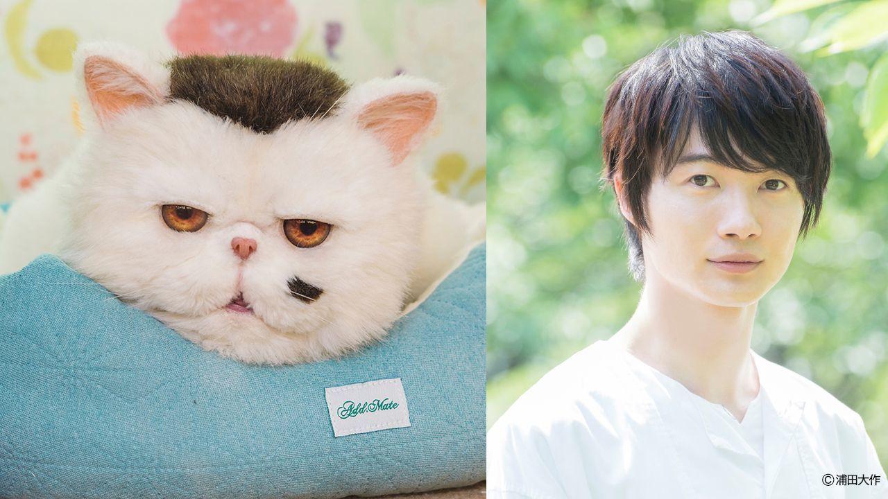 (C)「おじさまと猫」製作委員会』