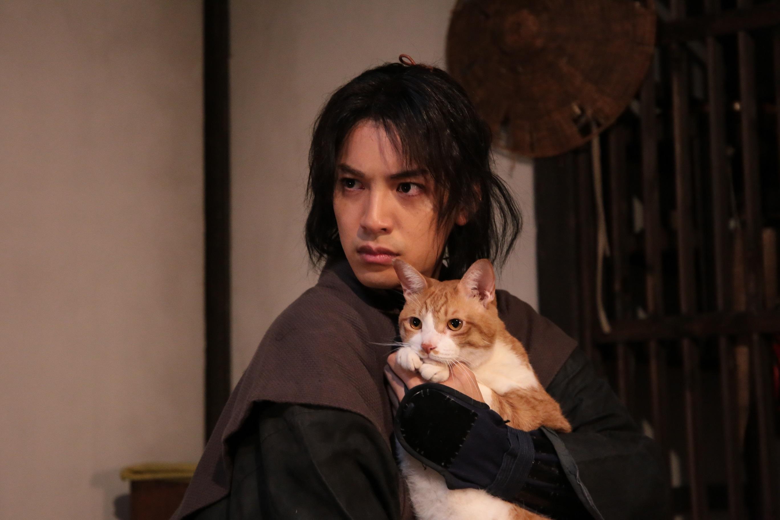 (C)2017「猫忍」製作委員会