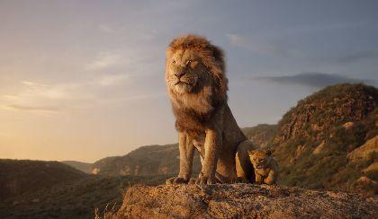 実写『ライオン・キング』3日間で200億円超えの全米首位スタート 世界興収は580億円を突破