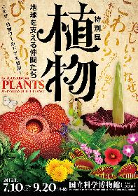 """最も身近でミステリアスな存在 """"植物""""に焦点を当てた大規模展覧会 特別展『植物 地球を支える仲間たち』開催決定"""