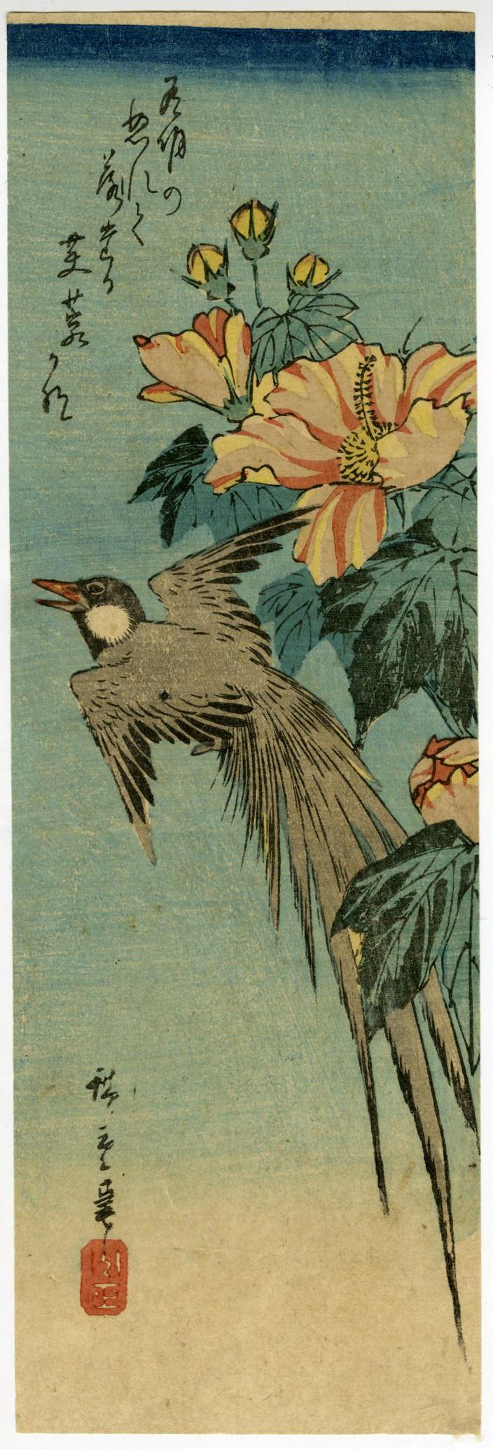 歌川広重「芙蓉に鳥」(部分)