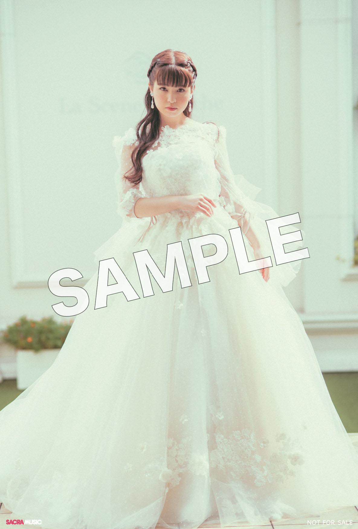 sample_ソフマップ