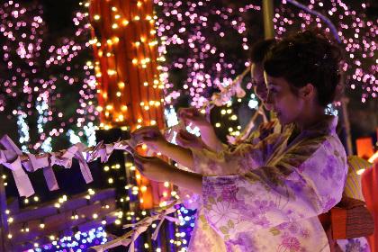 東映太秦映画村に光のパワースポット「御利益イルミネーション」出現