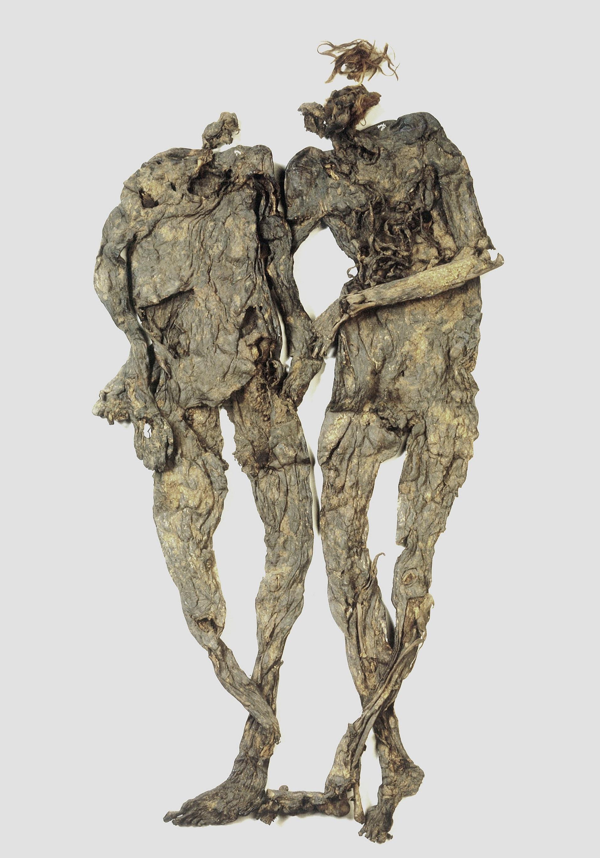 《ウェーリンゲメン》 ドレンテ博物館所蔵 紀元前40年-後50年頃、オランダ