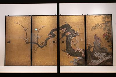 狩野 山雪 《梅花遊禽図襖》 紙本金地着色 四面 各184.0×94.0cm 寛永8年(1631) 京都・天球院