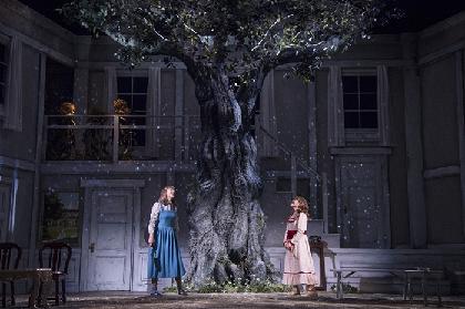 2018年、ナイロン100℃創立25周年、記念イヤーに本公演二本、4月『百年の秘密』&7月『睾丸』(仮題)を上演
