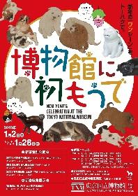 「犬」をテーマにした特集展示も 東京国立博物館の『博物館に初もうで』が開催