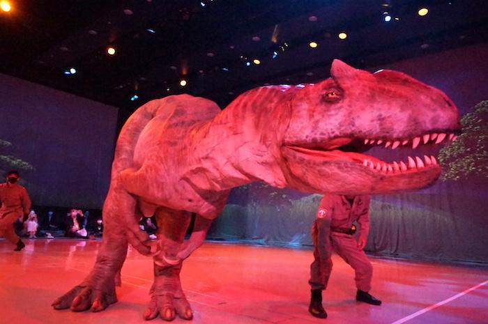 なんともワルそうな顔をしているアロサウルス(ごめんね)。眼の上の突起が特徴的だ