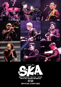 スカパラ トリビュート盤にACIDMAN、氣志團、キュウソ、10-FEET、VIVA LA J-ROCK ANTHEMS feat.TERU(GLAY)ら全参加アーティスト発表