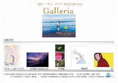 劇団フェリーちゃん『Galleria -展示と出し物の文化祭-』  新宿眼科画廊スペースOにて、5月20日(木)開幕