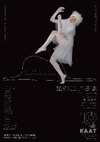 森山開次演出・振付の『星の王子さま -サン=テグジュペリからの手紙-』 作品の世界観を感じられるビジュアル&公演詳細が発表