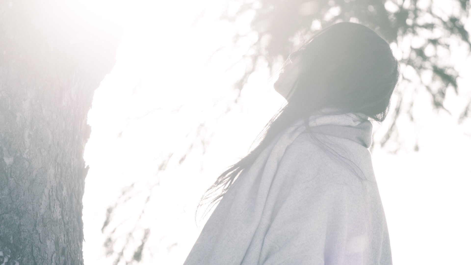 日食なつこ「ログマロープ」MVより