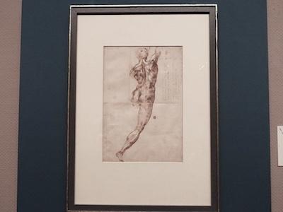 ミケランジェロ・ブオナローティ《背を向けた男性裸体像》 1504〜1505年頃 カーサ・ブオナローティ