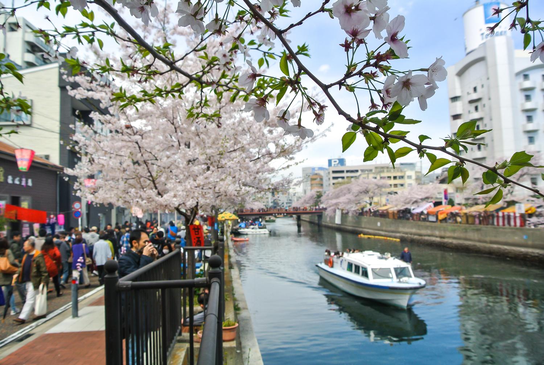 「大岡川」photo by 大野隆一