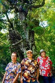 30周年を迎えるBEGIN、3月21日に石垣島から生配信ライブを開催
