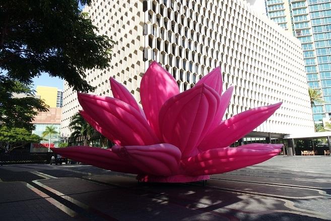 Choi Jeong Hwa《breathing flower》,Honolulu Biennale,2017