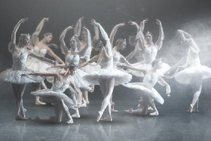 ロイヤル・バレエの総力を結集した『ラ・バヤデール』いよいよ映画館公開、ムンタギロフのインタビュー映像到着
